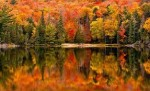 New England & Canada in the Fall