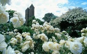 Sissinghurst Castle Gardens1